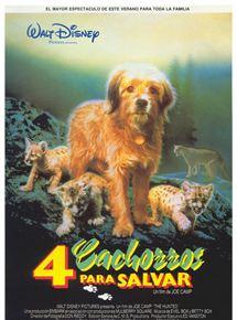 4 cachorros para salvar