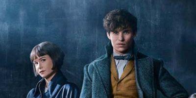 'Animales fantásticos: Los Crímenes de Grindelwald': La película estará ambientada casi totalmente en París