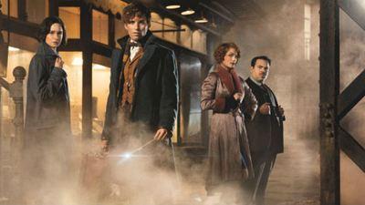 J.K. Rowling confirma que 'Animales fantásticos y dónde encontrarlos' será una saga de cinco películas