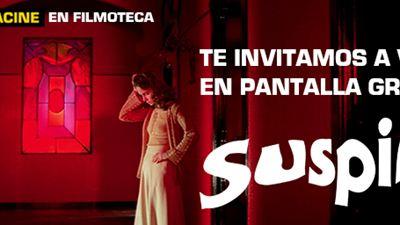 ¡TE INVITAMOS A VER 'SUSPIRIA' EN PANTALLA GRANDE EN LA FILMOTECA!