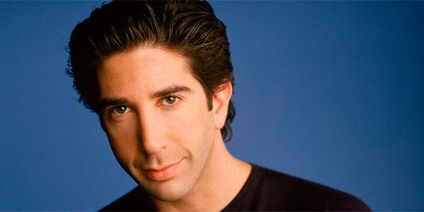 David Schwimmer Admits His Gay -