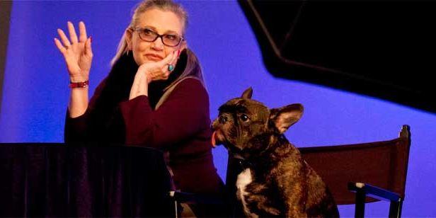 'Star Wars 8: Los últimos Jedi': Aseguran que el perro de Carrie Fisher la reconoció mientras veía la película