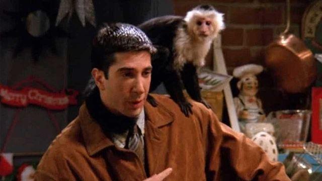'Y: El último hombre': El mono Marcel de 'Friends' volverá a la televisión para la nueva serie de FX