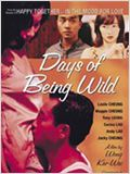 Days of Being Wild (D&#237;as Salvajes)