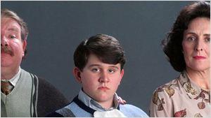 'Harry Potter': Una sorprendente teoría explica la crueldad de los Dursley