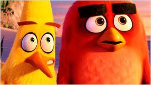 'Angry Birds. La película': Nuevo tráiler en español de la esperada película de animación