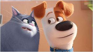 'Mascotas' se convierte en la película más taquillera del año