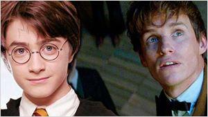 'Animales fantásticos y dónde encontrarlos': 13 términos (y más cosas) que ya aparecen en 'Harry Potter'