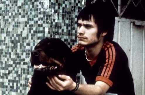 Ver Amores perros (2000) Online Película Completa Latino Español en HD