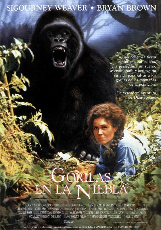 Gorilas en la niebla pel cula 1988 for Gorilas en la niebla