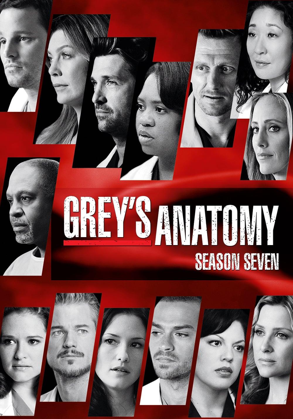 Anatomía de Grey: Guía de las temporadas - SensaCine.com