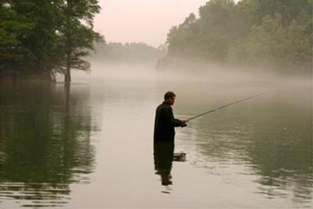 Big Fish : Foto