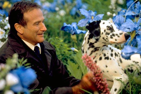 Más allá de los sueños : Foto Robin Williams, Vincent Ward