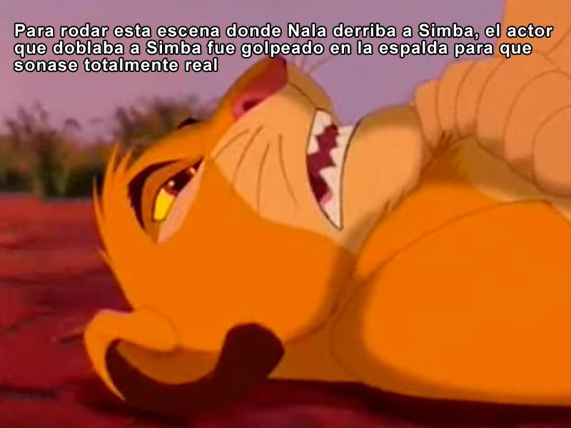 Para rodar esta escena donde Nala derriba a Simba, el actor que doblaba a Simba fue golpeado en la espalda para que sonase más real