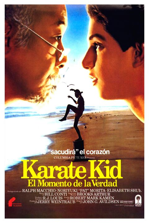 Karate Kid: El momento de la verdad : Cartel