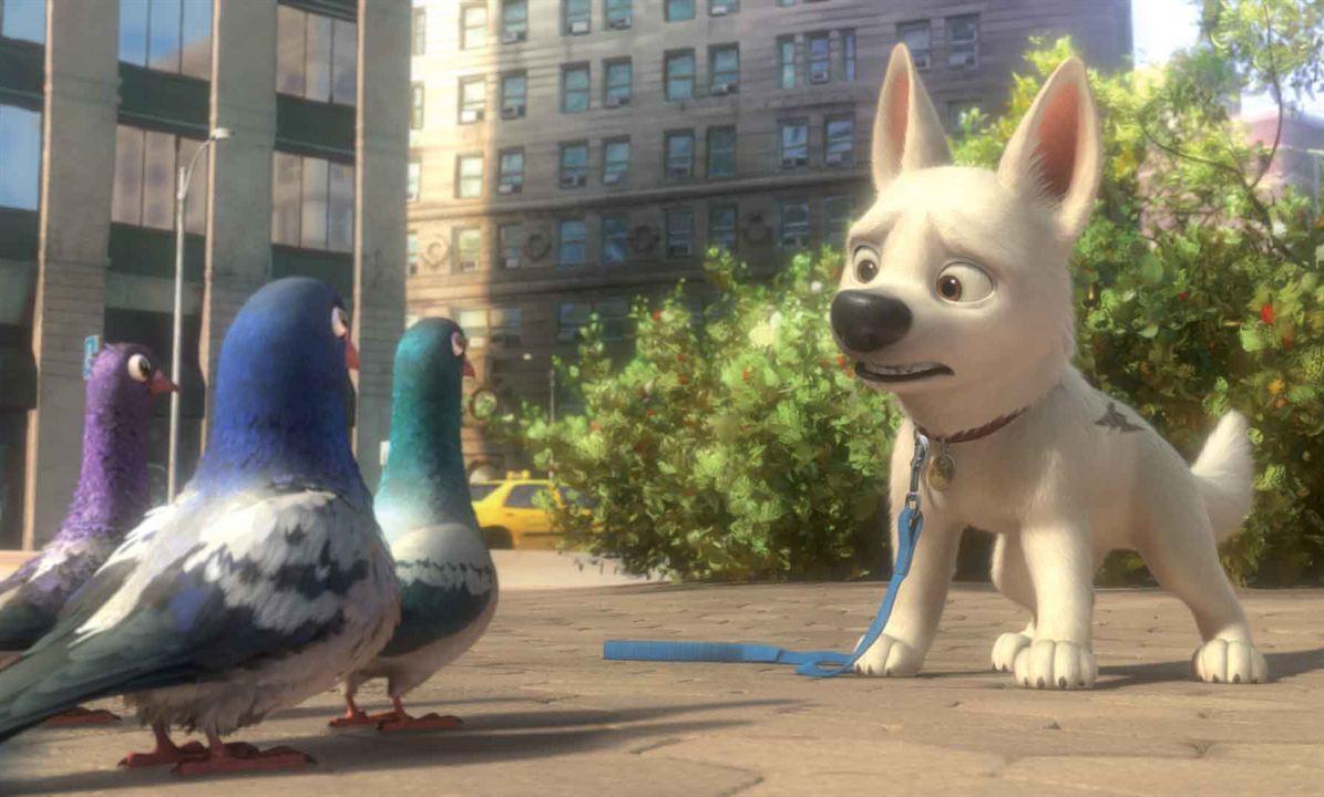 Bolt : Foto