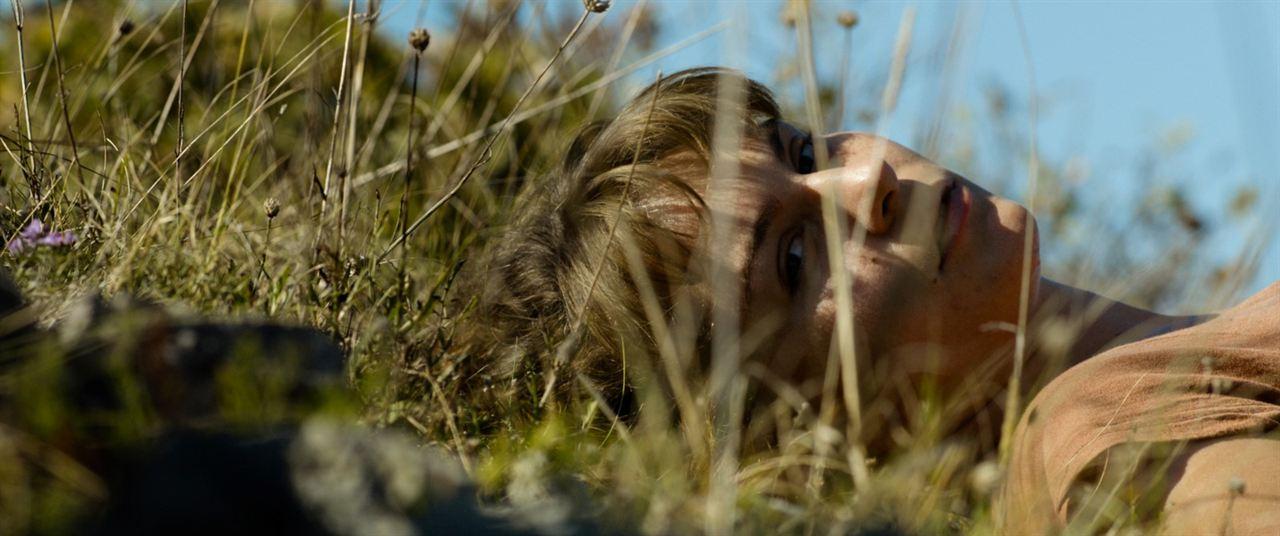 Bajo el sol : Foto