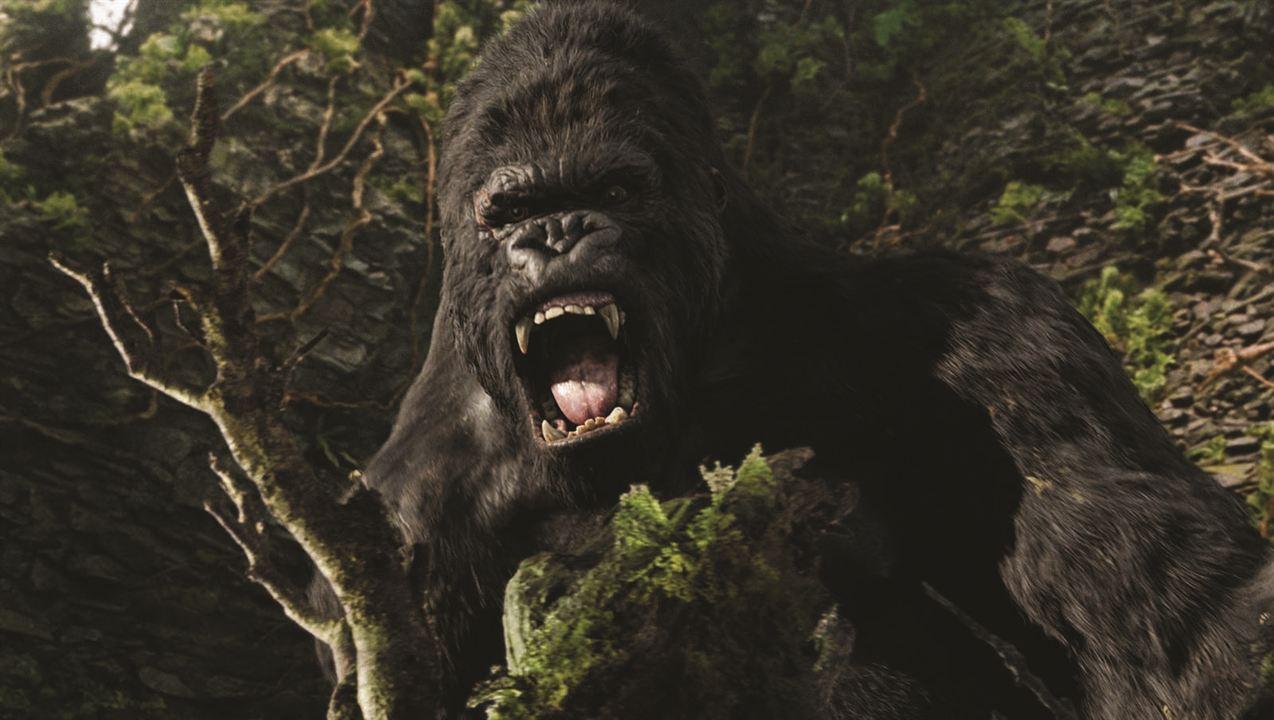 King Kong : Foto