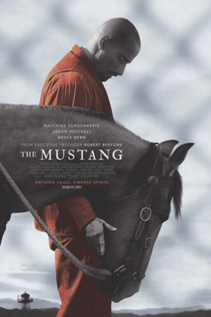 The Mustang : Cartel
