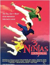 3 Ninjas contratacan