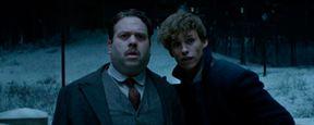 El productor de 'Animales fantásticos y dónde encontrarlos' confirma que sus secuelas conectarán con 'Harry Potter'