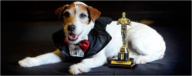 Uggie, el perro de 'The Artist', muere a los 13 años