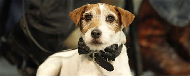 Las 15 mejores fotos de Uggie, el perro de 'The Artist'