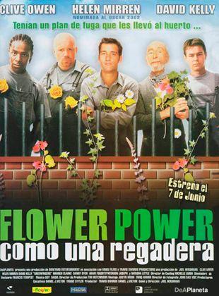Flower power, como una regadera