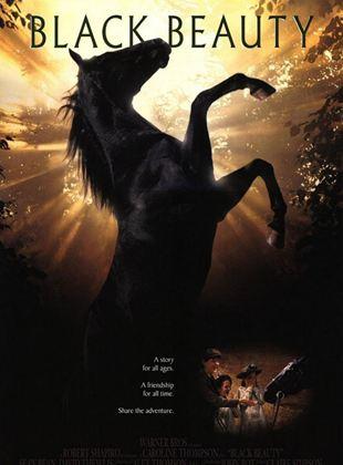 Belleza negra (Un caballo llamado Furia)