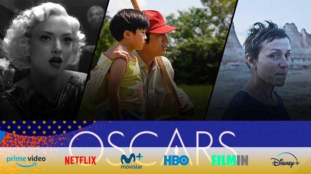 Dónde puedes ver las películas ganadoras de los Oscar 2021: Netflix, Amazon, Disney+ y en salas