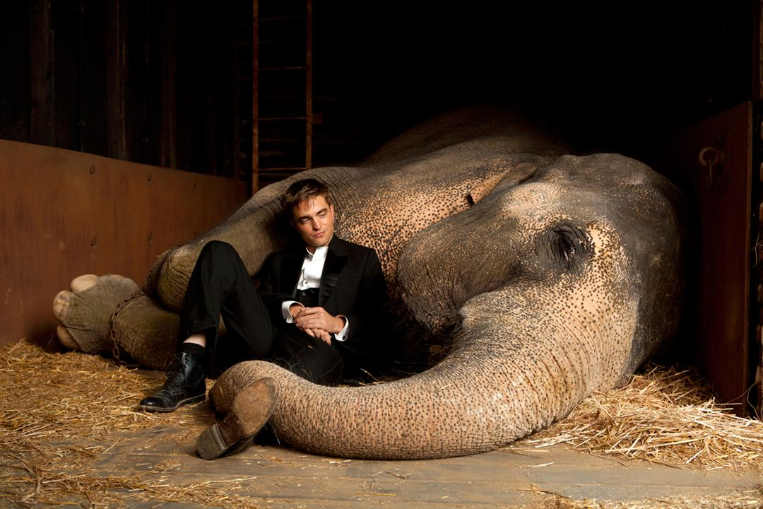Agua para elefantes : Foto Robert Pattinson