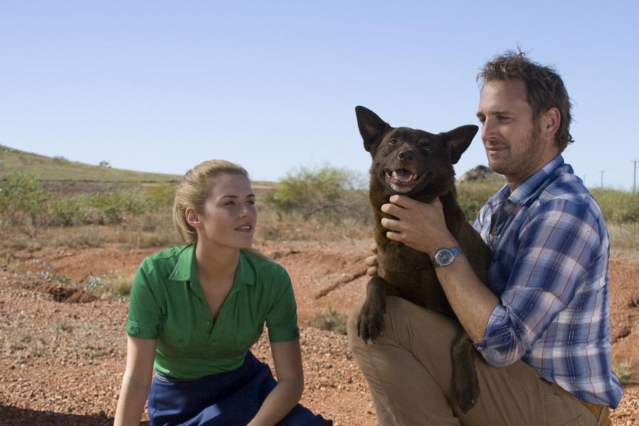 Red Dog: Rachael Taylor, Josh Lucas