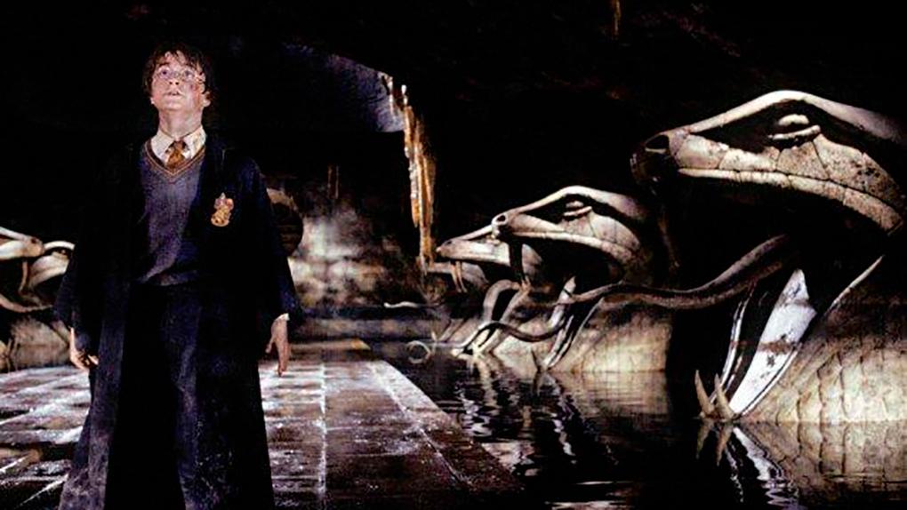 La primera vez que Harry defiende a Ginny
