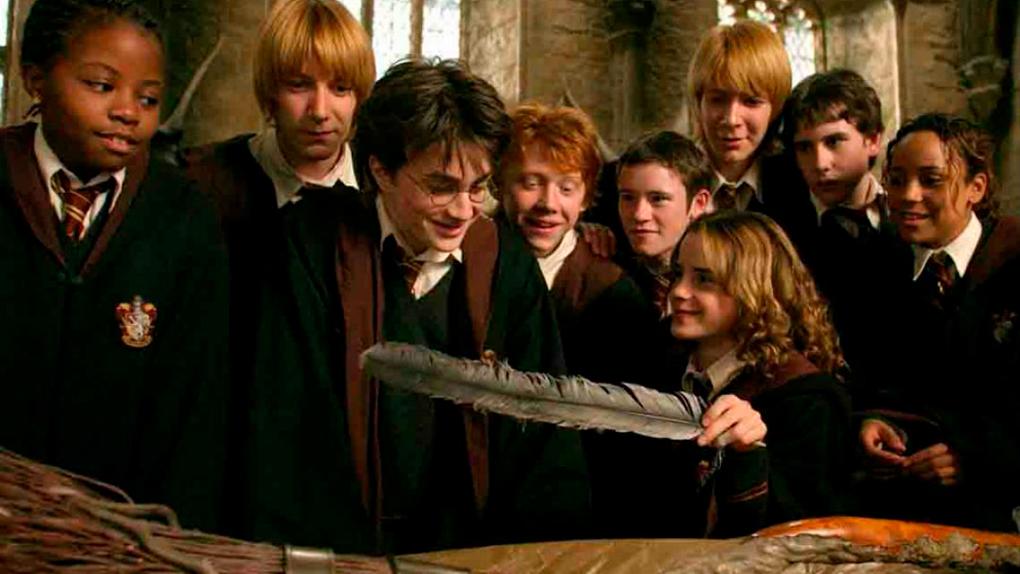 Cuando Harry descubre el contenido de sus paquetes, ¿qué será?