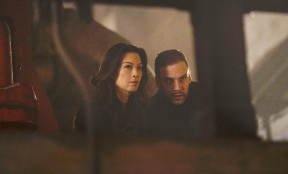 Foto Ming-Na Wen, Nick Blood