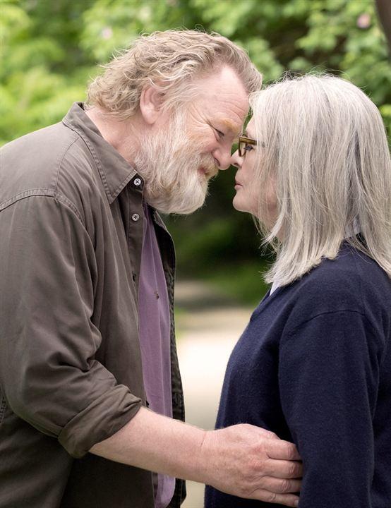 Una cita en el parque : Foto Brendan Gleeson, Diane Keaton
