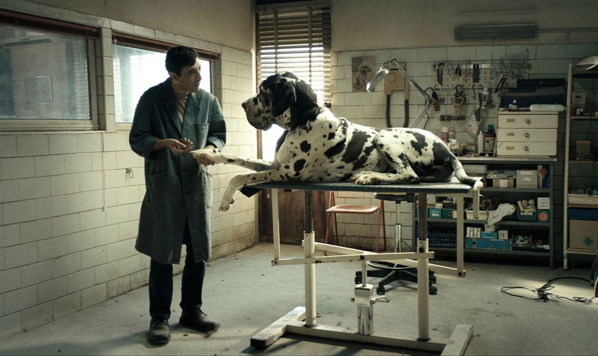 Dogman: Marcello Fonte