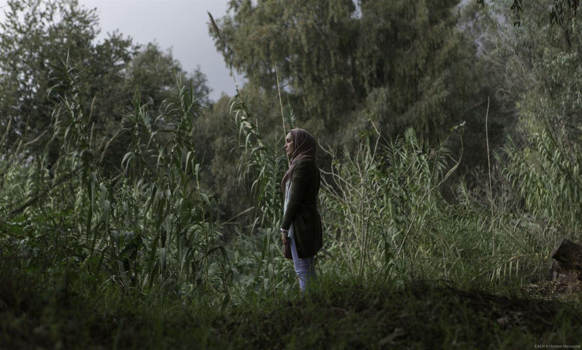 En attendant les Hirondelles: Hania Amar