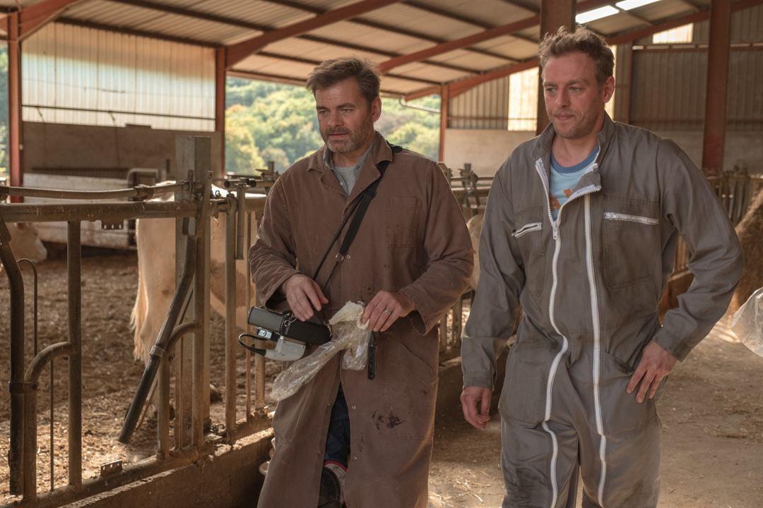 Una veterinaria en la Borgoña: Clovis Cornillac
